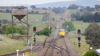 8159 on grain at Yass Junction
