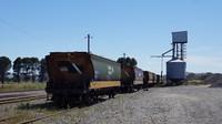 Grain wagons at Maroona