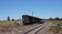 Stored wagons at Murtoa