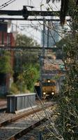 Long Island Steel between Hawksburn and South Yarra