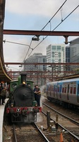 Steamrail at Flinders St