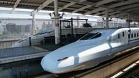 N700 and Tsubame at Kumamoto