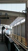 Tsubame at Kumamoto