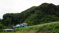 Super-view Odoriko approaching Shimoda