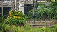 Hama-Kawasaki Station