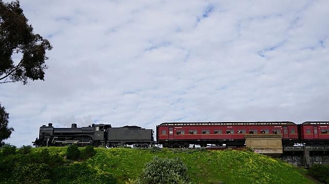 DSC05208