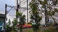 DSC06835