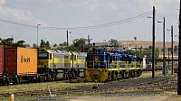 DSC09555