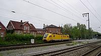 DSC03115