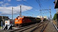 DSC02501