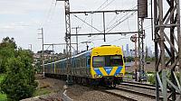 DSC03973