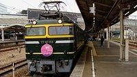 The Twilight Express at Shin Osaka
