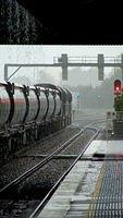Coal passes Maitland in the rain