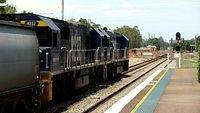 Coal passes Maitland towards Newcastle