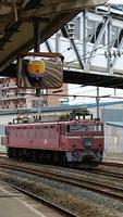 Nihonkai EF81 stored