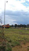 Running around in Canberra Yard