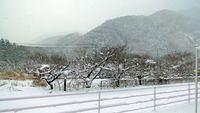 Somewhere between Koriyama and Aizuwakamatsu