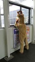 Station treats for SL passengers