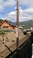 Emu approaching Senzu Station
