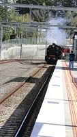 Steamrail K Class passing Laburnum