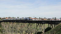 XPT on Bridge near Pascoe Vale