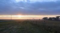 Manor Loop at dawn