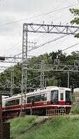 Nankai Koya Express