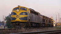 S303 leads El Zorro out of Dynon