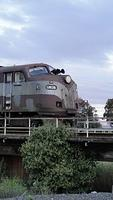 GM36 at Dynon