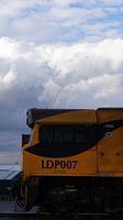 LDP007