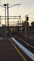 El Zorro light past Middle Footscray