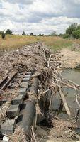 Debris piled against bridge