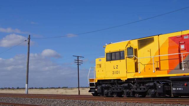 LZ3101 at McIntyre Loop