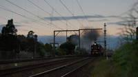 K190 leads Steamrail towards South Kensington