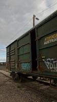 Old FA Wagons at Echuca