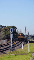 RLs from the Port at Marrickville