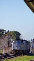 NOHABs return past Marrickville