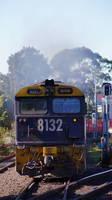 8132 on freight through Marrickville