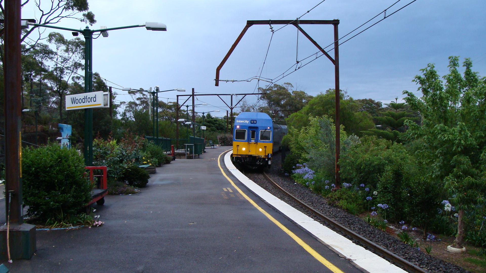 woodford blue mountains